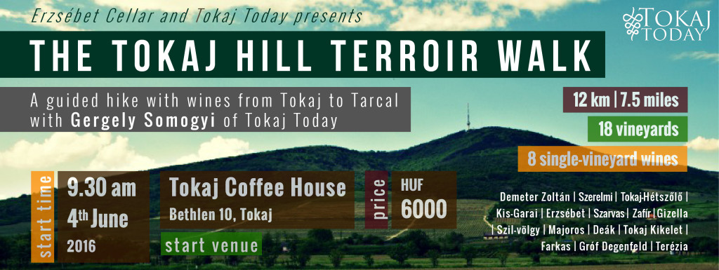 Tokaj Hill Terroir Walk_2016